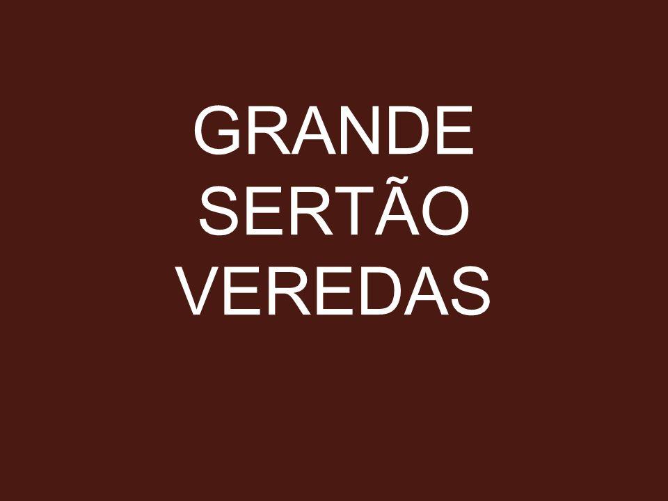 GRANDE SERTÃO VEREDAS