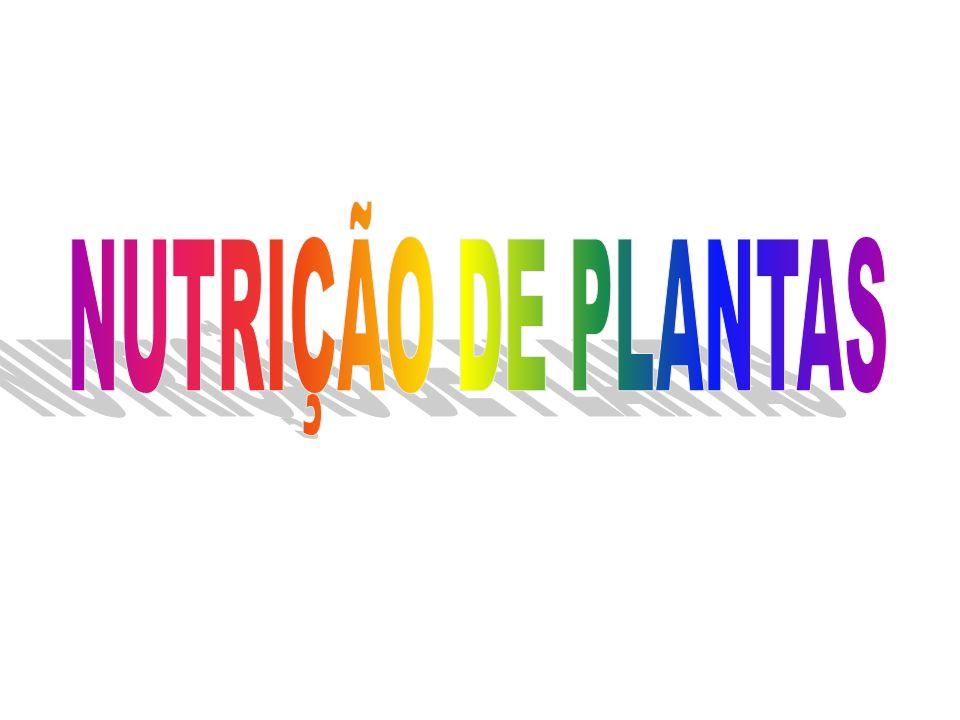 NUTRIÇÃO DE PLANTAS