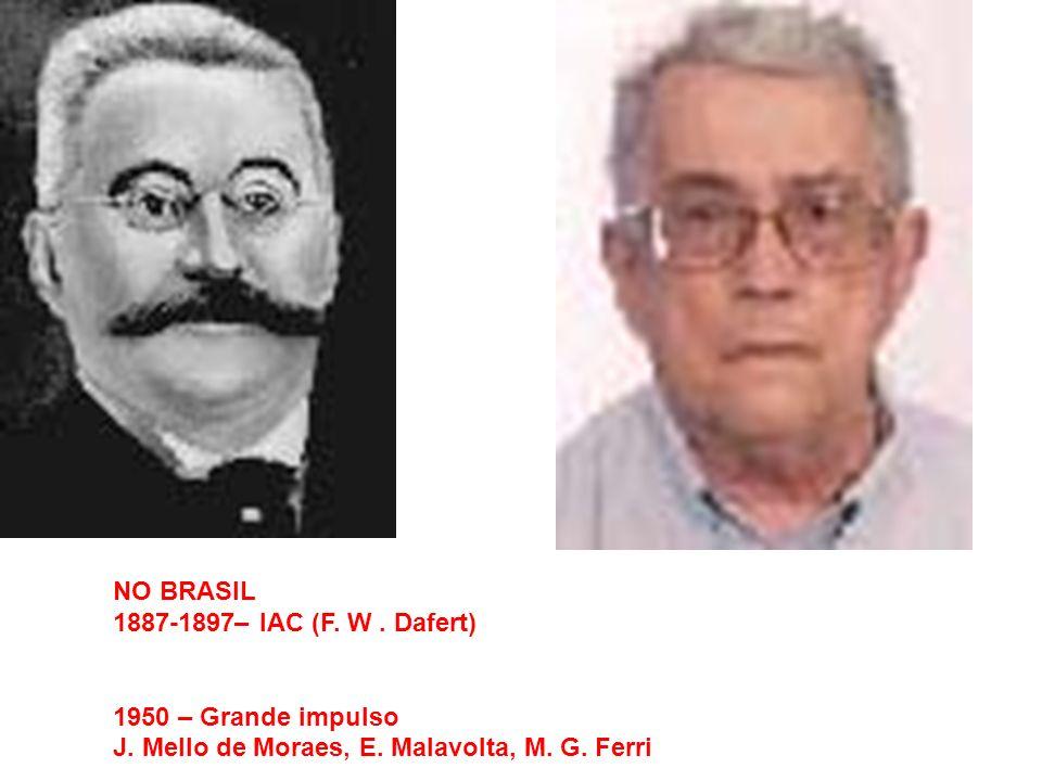 NO BRASIL1887-1897– IAC (F.W . Dafert) 1950 – Grande impulso.