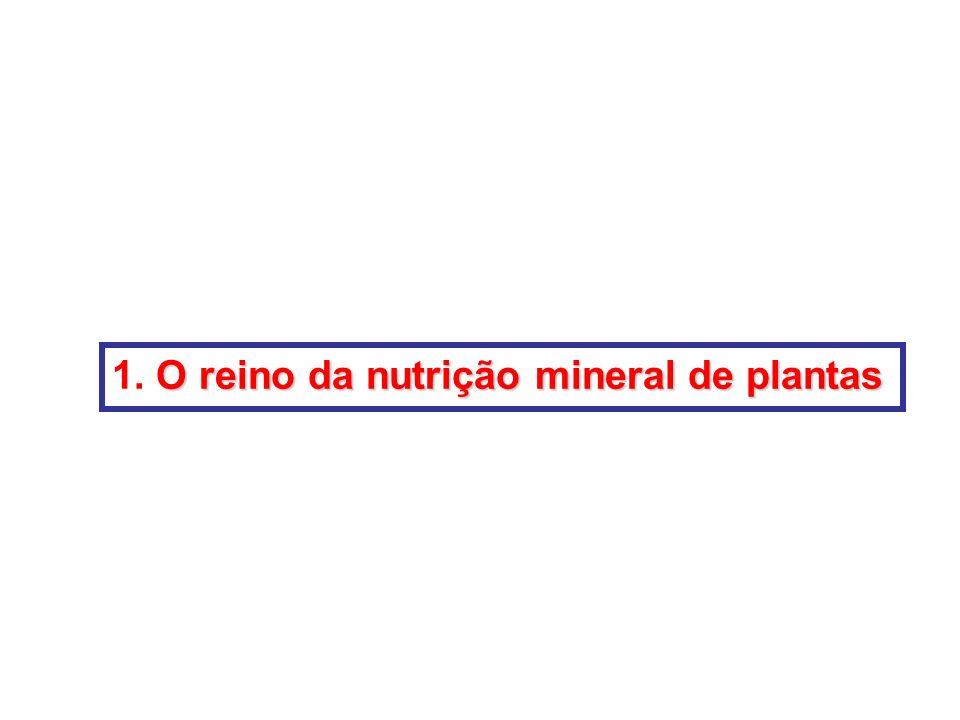 1. O reino da nutrição mineral de plantas