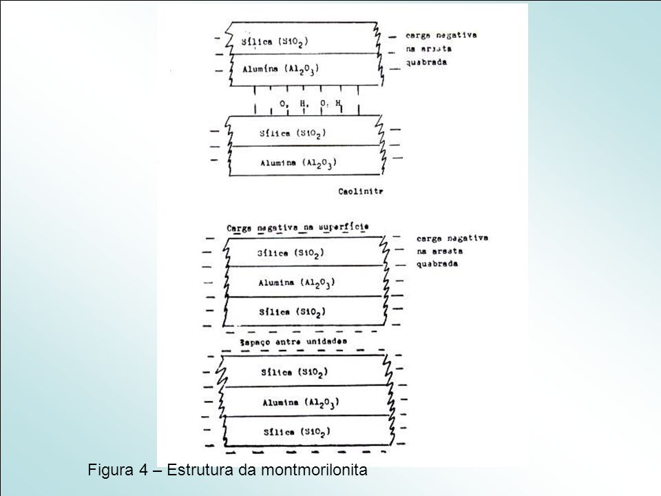 Figura 4 – Estrutura da montmorilonita