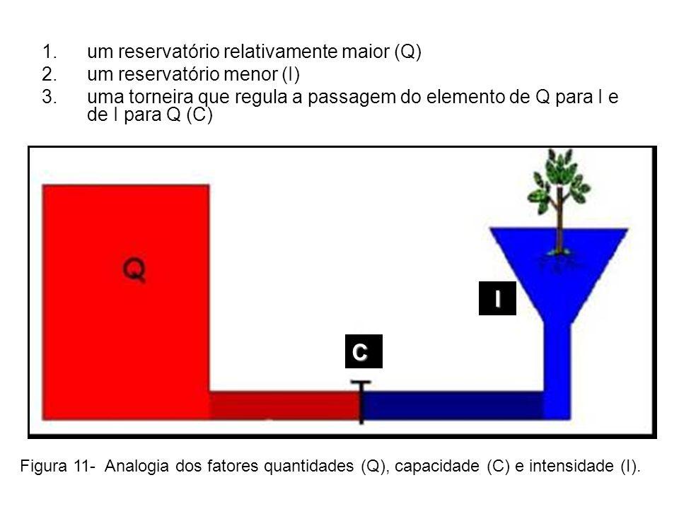 C um reservatório relativamente maior (Q) um reservatório menor (I)