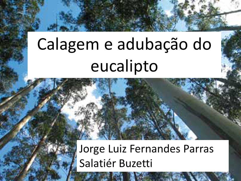 Calagem e adubação do eucalipto