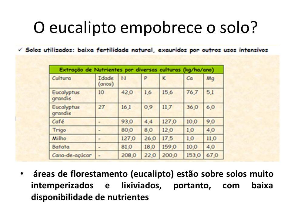O eucalipto empobrece o solo