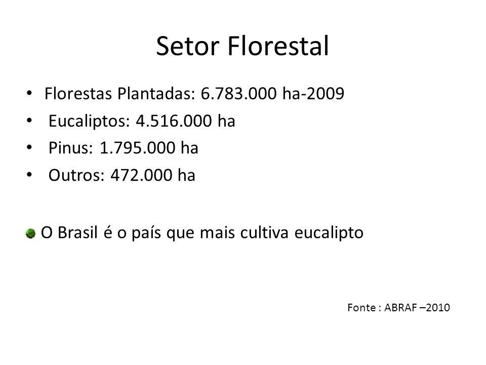 Setor Florestal Florestas Plantadas: 6.783.000 ha-2009