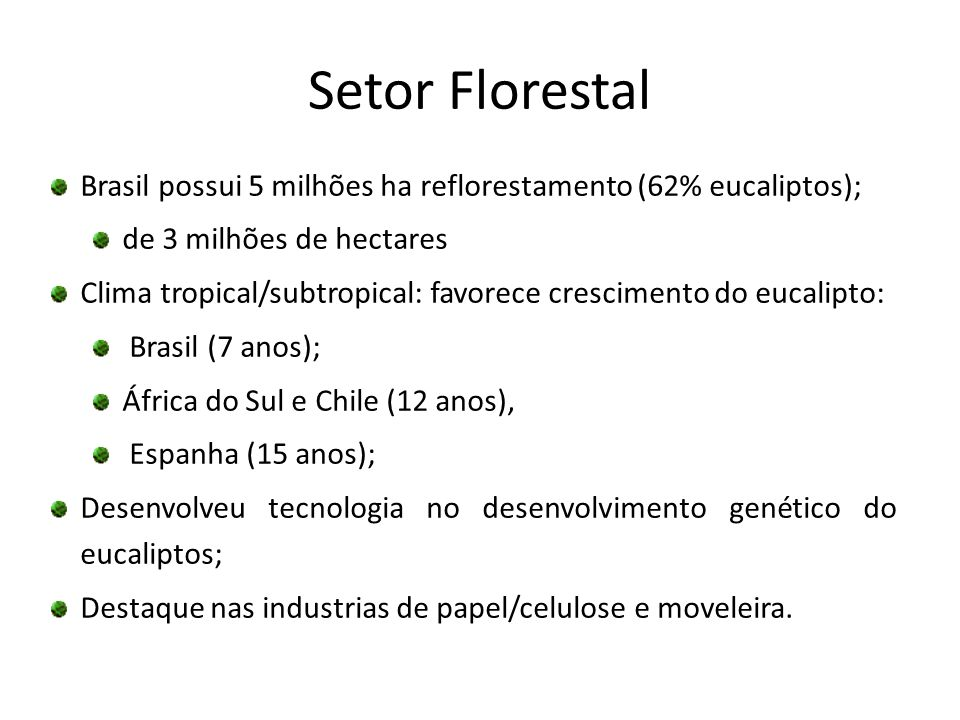 Setor Florestal Brasil possui 5 milhões ha reflorestamento (62% eucaliptos); de 3 milhões de hectares.