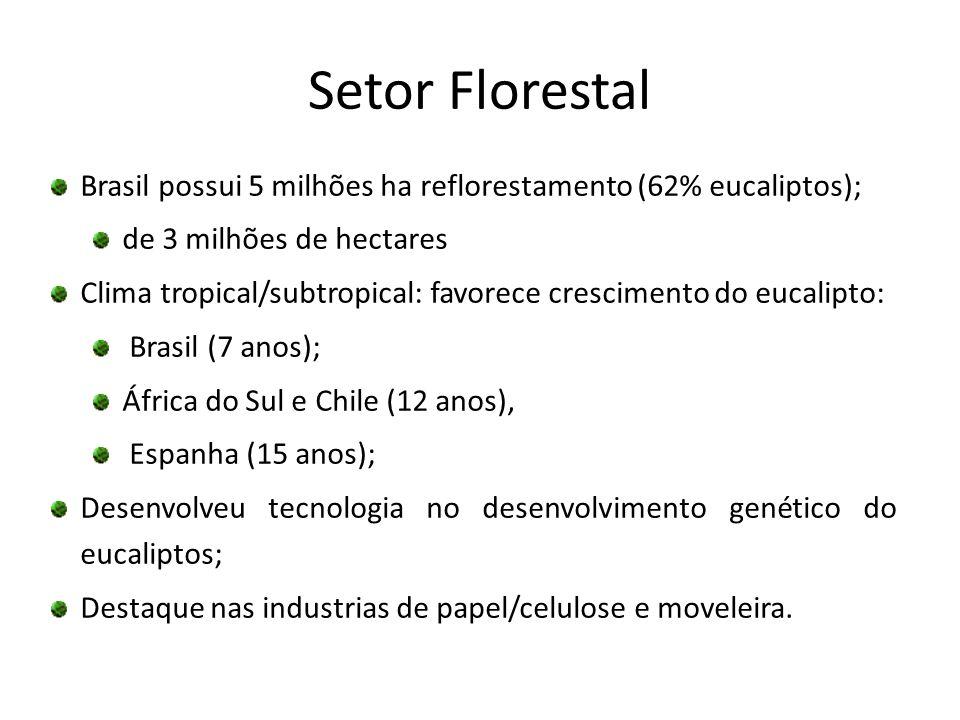 Setor FlorestalBrasil possui 5 milhões ha reflorestamento (62% eucaliptos); de 3 milhões de hectares.