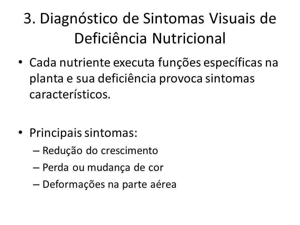 3. Diagnóstico de Sintomas Visuais de Deficiência Nutricional