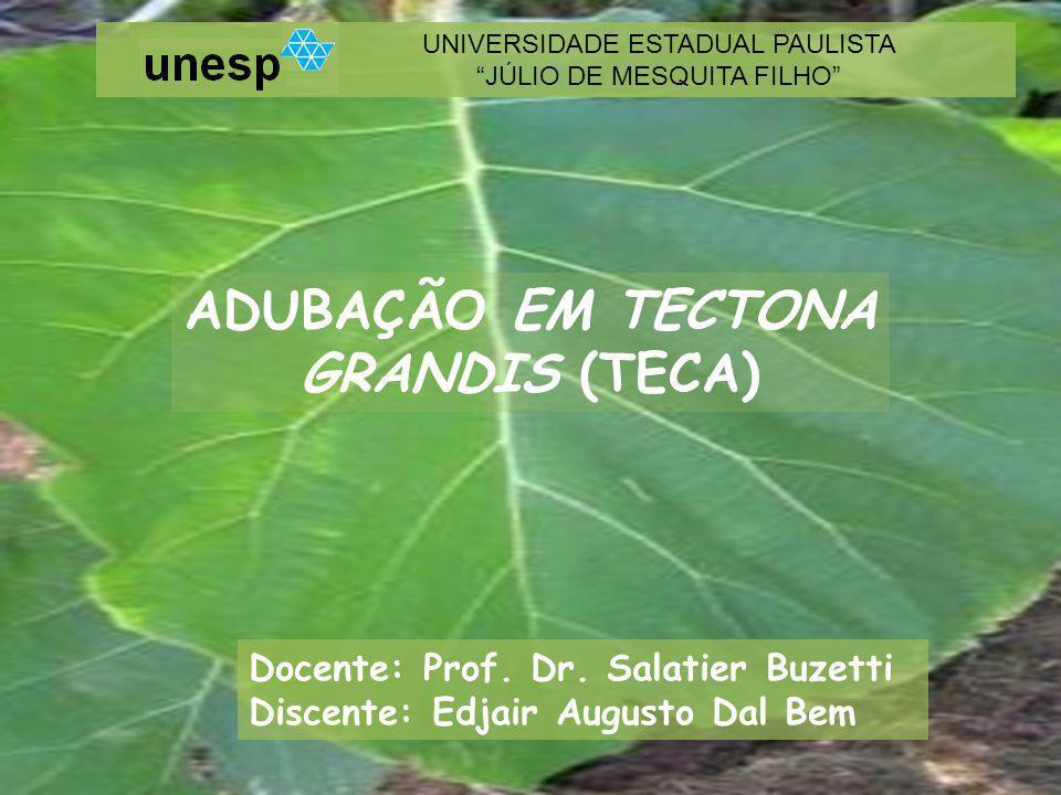ADUBAÇÃO EM TECTONA GRANDIS (TECA)