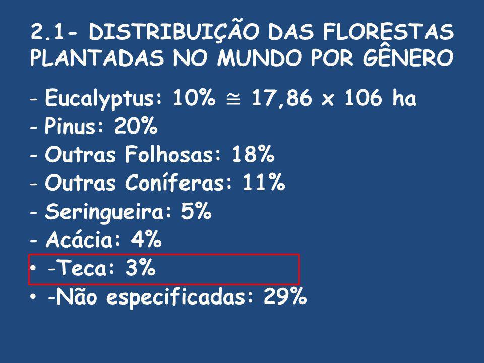 2.1- DISTRIBUIÇÃO DAS FLORESTAS PLANTADAS NO MUNDO POR GÊNERO