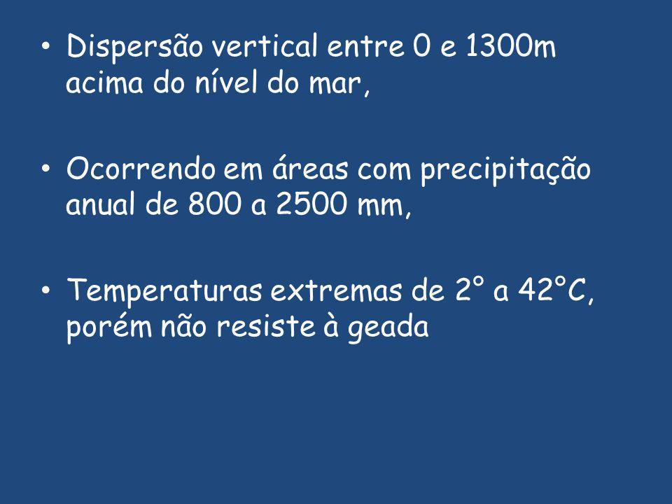 Dispersão vertical entre 0 e 1300m acima do nível do mar,