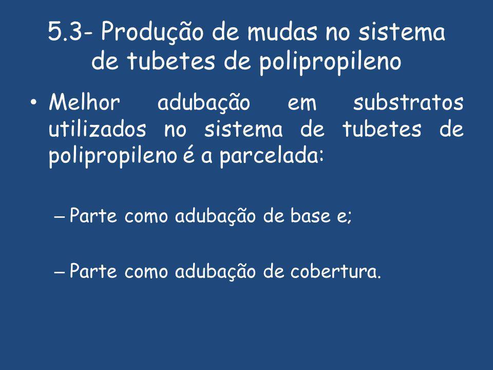 5.3- Produção de mudas no sistema de tubetes de polipropileno