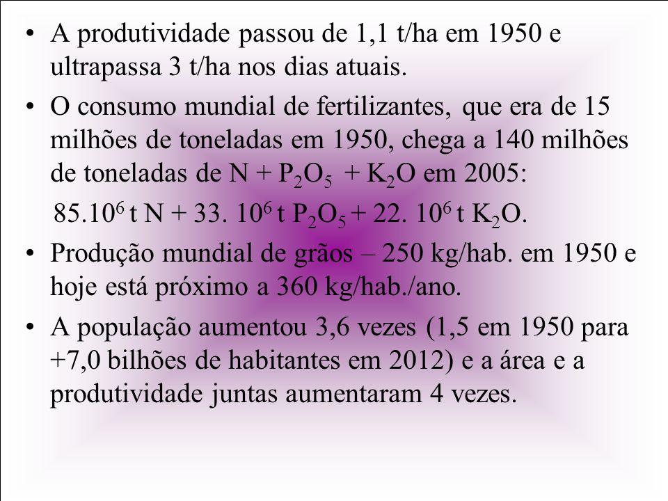 A produtividade passou de 1,1 t/ha em 1950 e ultrapassa 3 t/ha nos dias atuais.