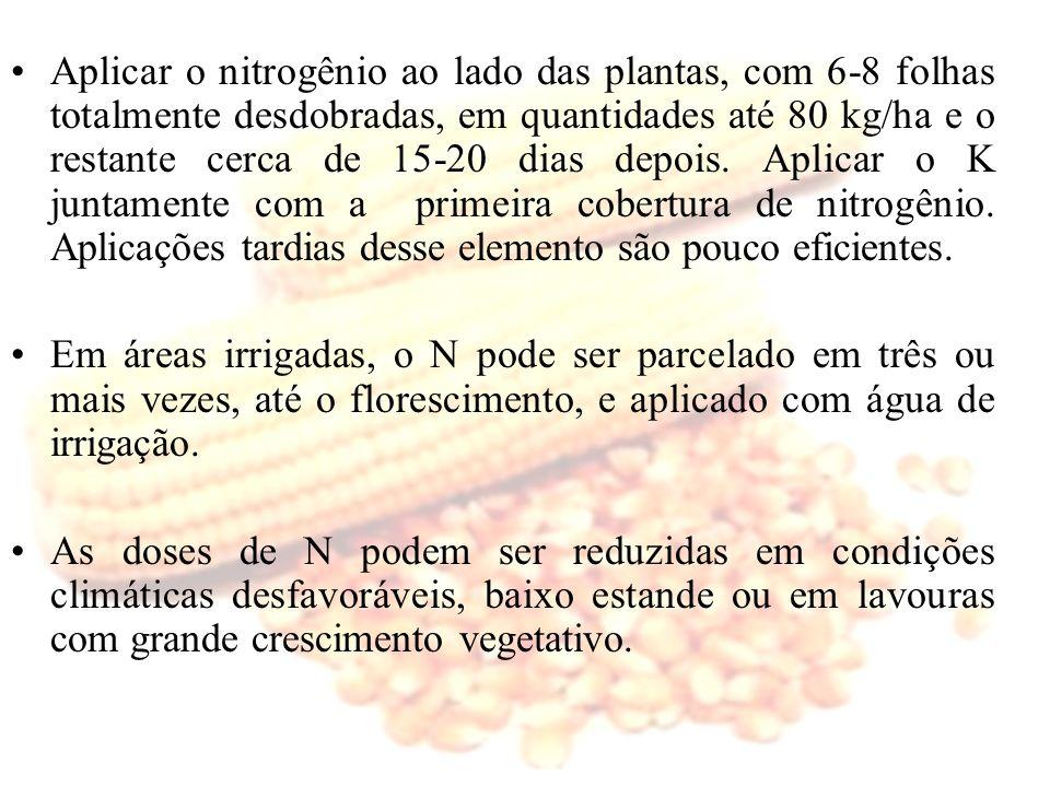 Aplicar o nitrogênio ao lado das plantas, com 6-8 folhas totalmente desdobradas, em quantidades até 80 kg/ha e o restante cerca de 15-20 dias depois. Aplicar o K juntamente com a primeira cobertura de nitrogênio. Aplicações tardias desse elemento são pouco eficientes.