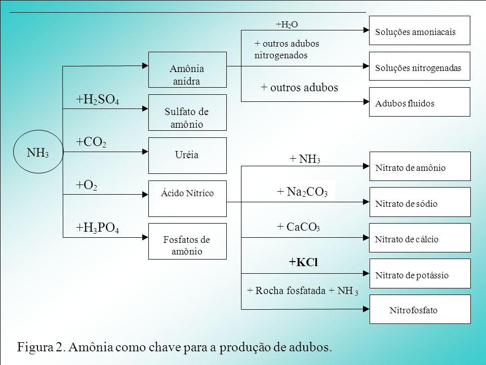 Figura 2. Amônia como chave para a produção de adubos.