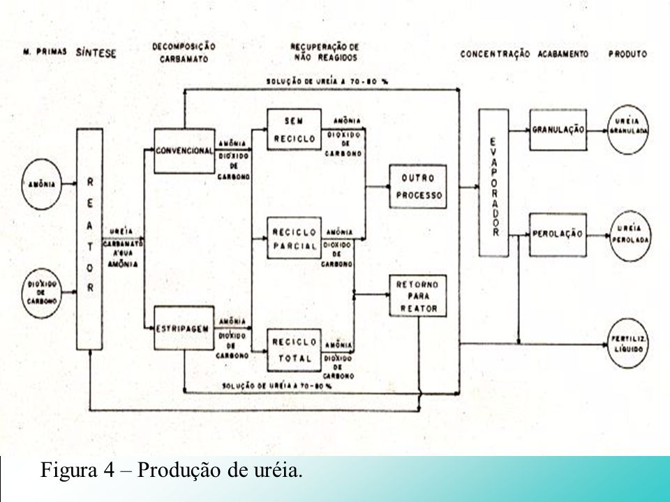 Figura 4 – Produção de uréia.