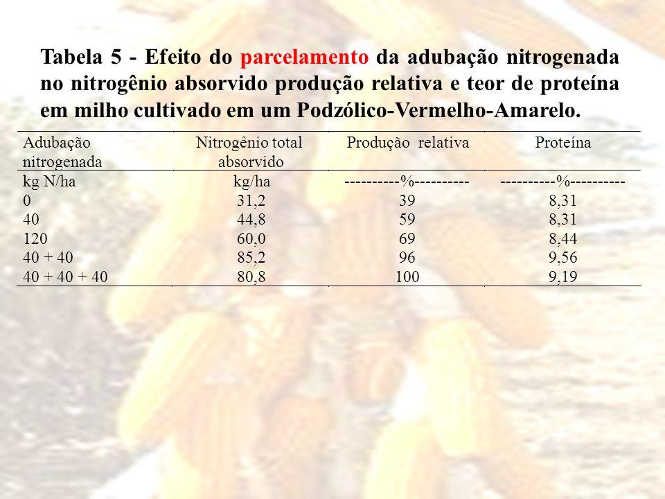 Tabela 5 - Efeito do parcelamento da adubação nitrogenada no nitrogênio absorvido produção relativa e teor de proteína em milho cultivado em um Podzólico-Vermelho-Amarelo.