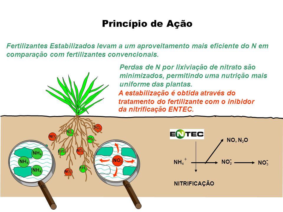 Princípio de Ação Fertilizantes Estabilizados levam a um aproveitamento mais eficiente do N em comparação com fertilizantes convencionais.