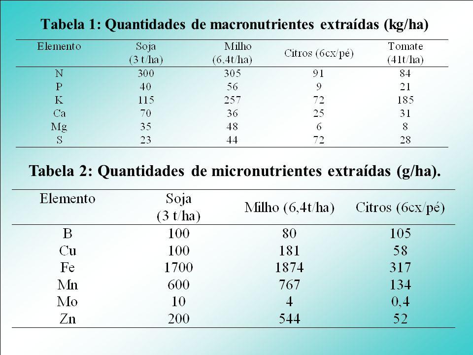 Tabela 2: Quantidades de micronutrientes extraídas (g/ha).