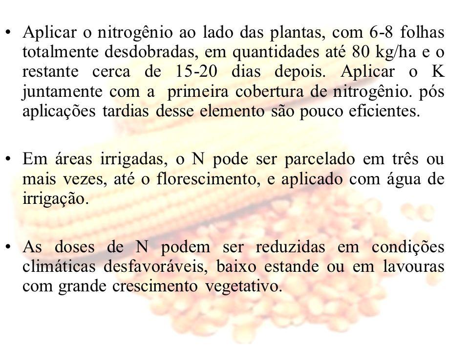 Aplicar o nitrogênio ao lado das plantas, com 6-8 folhas totalmente desdobradas, em quantidades até 80 kg/ha e o restante cerca de 15-20 dias depois. Aplicar o K juntamente com a primeira cobertura de nitrogênio. pós aplicações tardias desse elemento são pouco eficientes.