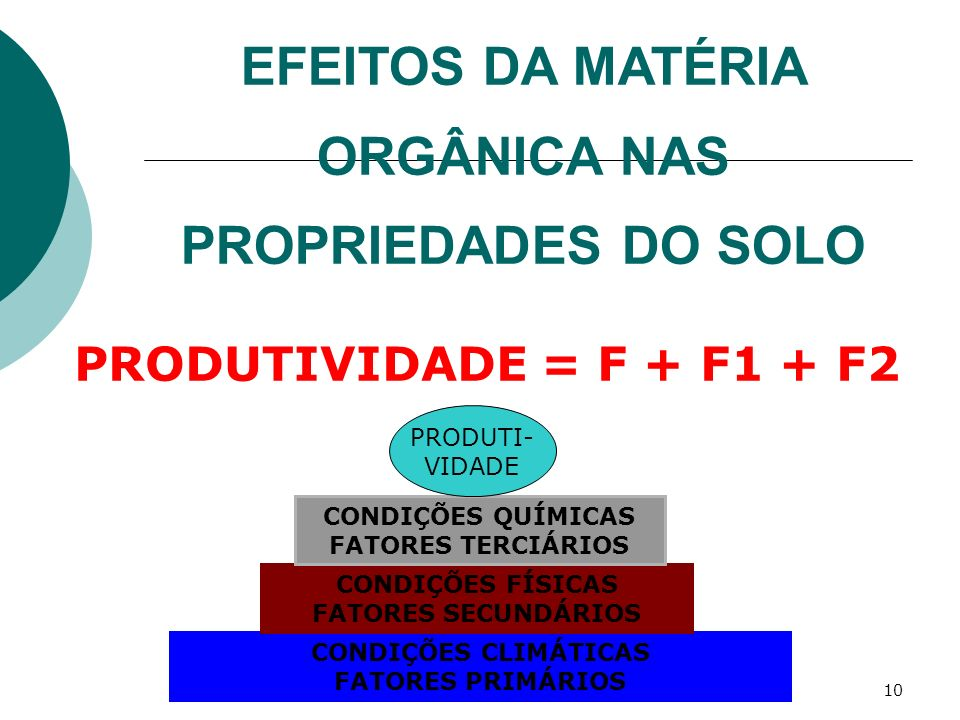 EFEITOS DA MATÉRIA ORGÂNICA NAS PROPRIEDADES DO SOLO