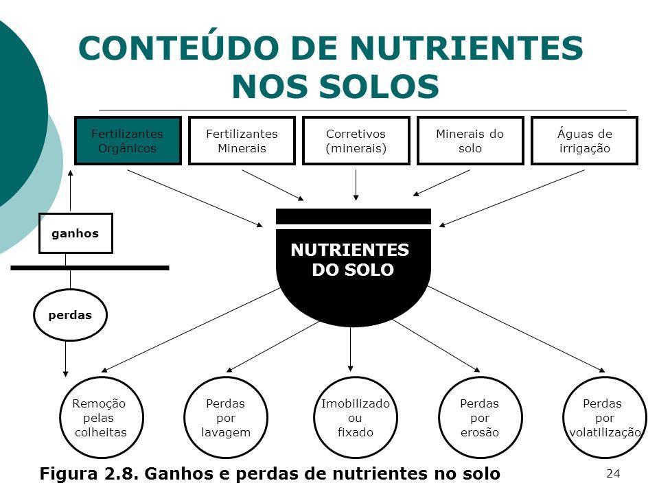 CONTEÚDO DE NUTRIENTES