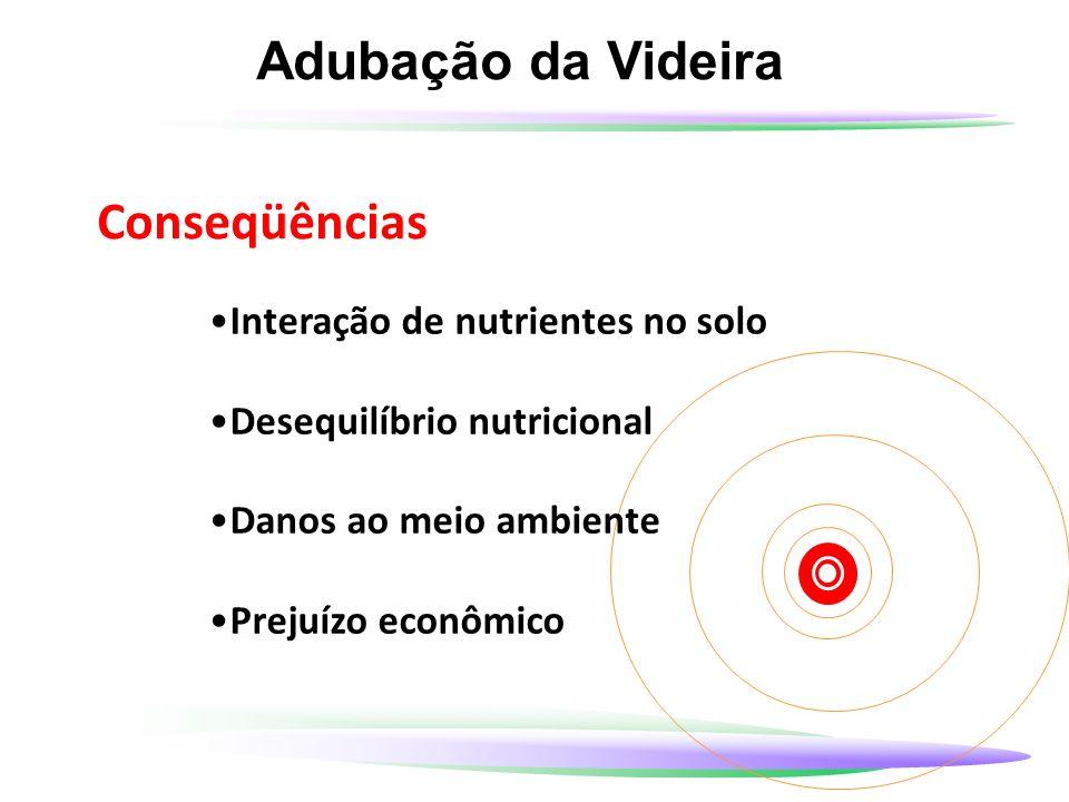 Adubação da Videira Conseqüências Interação de nutrientes no solo