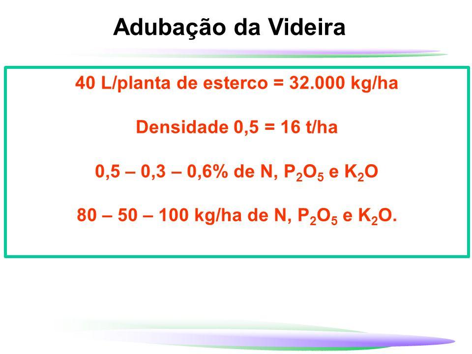 40 L/planta de esterco = 32.000 kg/ha
