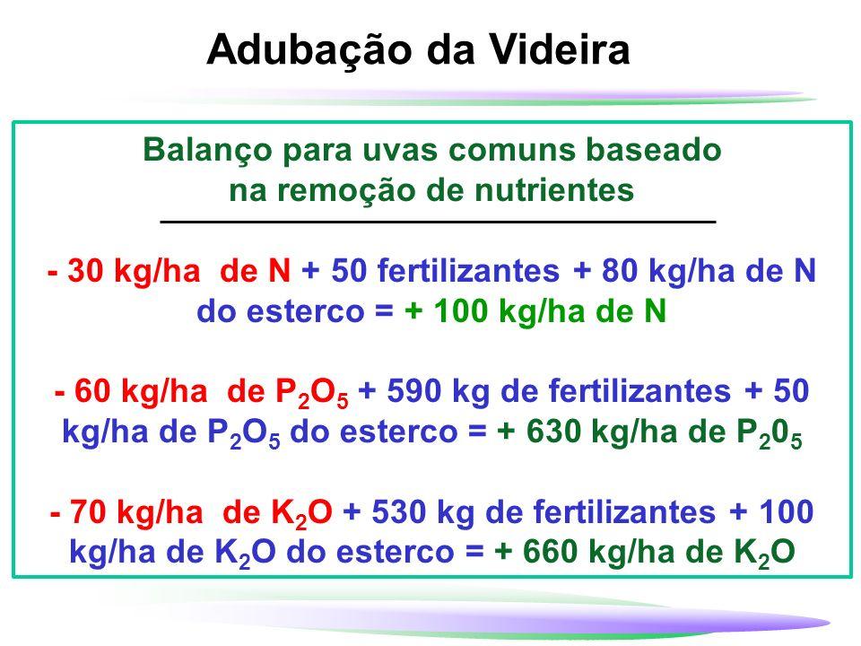 Balanço para uvas comuns baseado na remoção de nutrientes