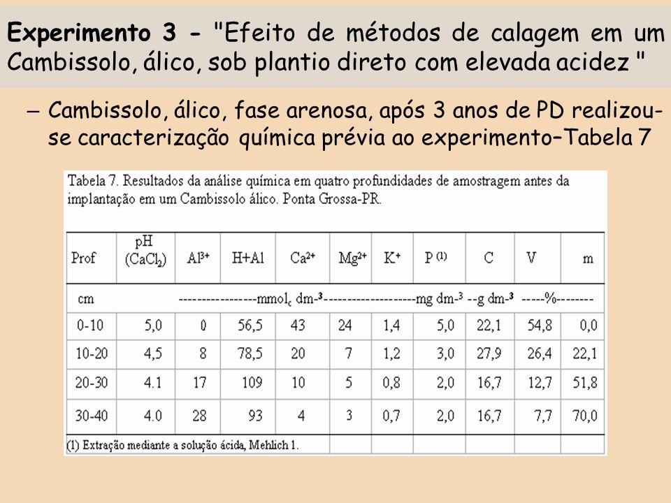 Experimento 3 - Efeito de métodos de calagem em um Cambissolo, álico, sob plantio direto com elevada acidez