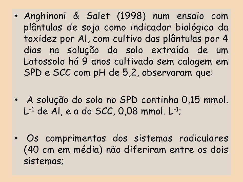 Anghinoni & Salet (1998) num ensaio com plântulas de soja como indicador biológico da toxidez por Al, com cultivo das plântulas por 4 dias na solução do solo extraída de um Latossolo há 9 anos cultivado sem calagem em SPD e SCC com pH de 5,2, observaram que: