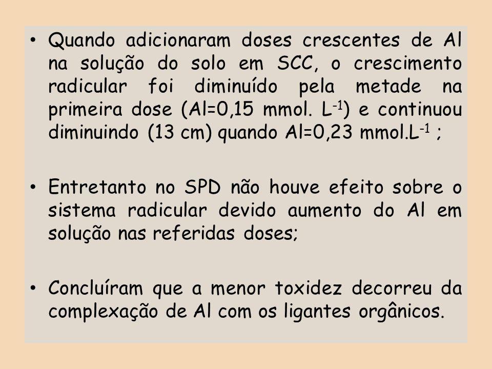 Quando adicionaram doses crescentes de Al na solução do solo em SCC, o crescimento radicular foi diminuído pela metade na primeira dose (Al=0,15 mmol. L-1) e continuou diminuindo (13 cm) quando Al=0,23 mmol.L-1 ;