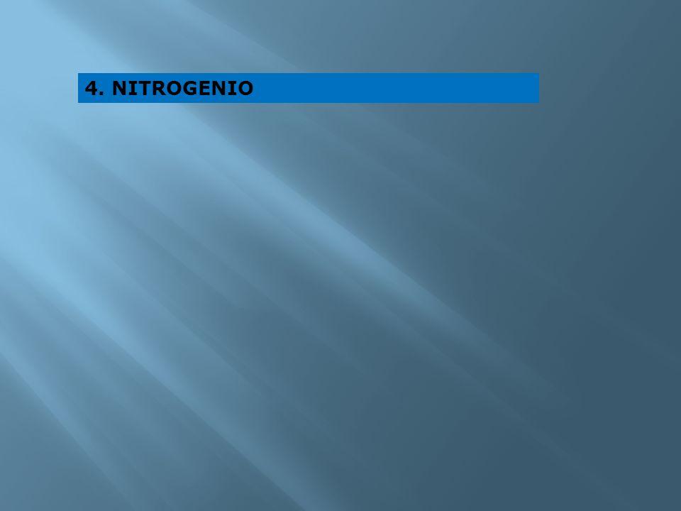 4. NITROGENIO