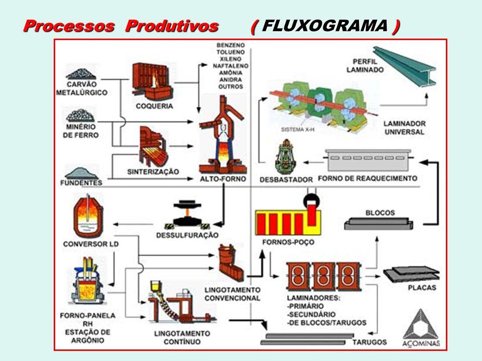Processos Produtivos ( FLUXOGRAMA )