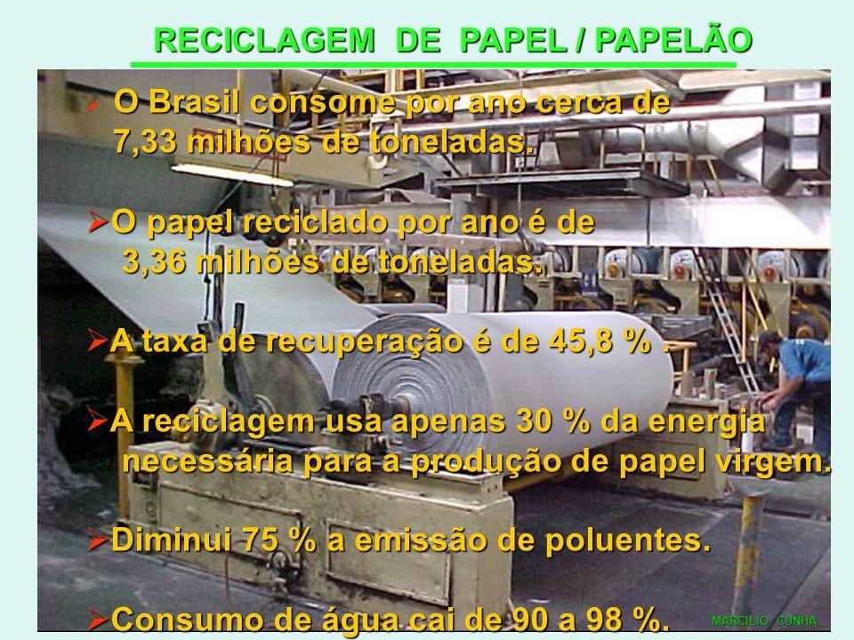 RECICLAGEM DE PAPEL / PAPELÃO