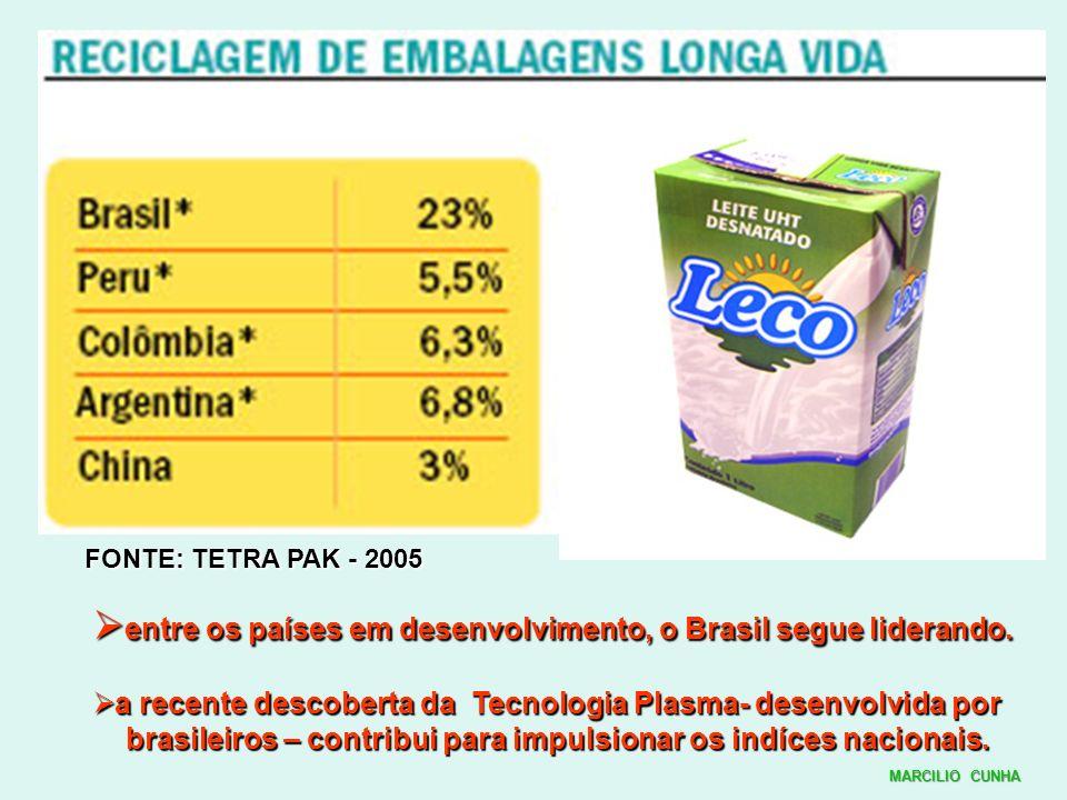 entre os países em desenvolvimento, o Brasil segue liderando.