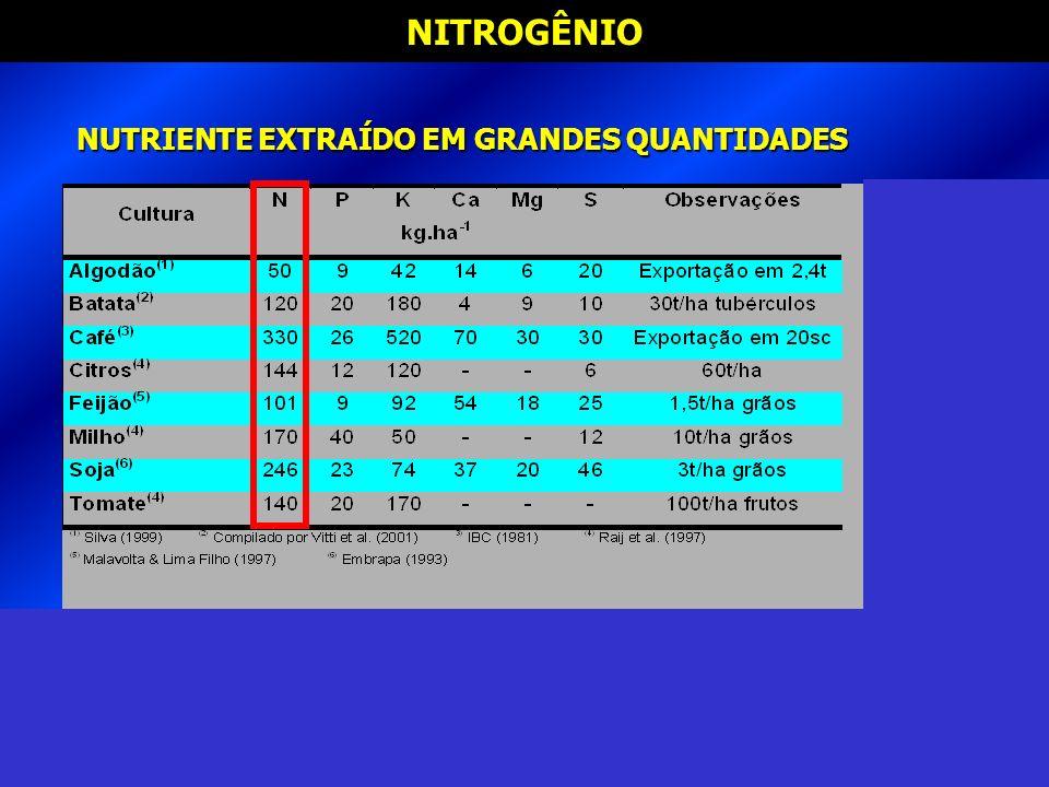 NUTRIENTE EXTRAÍDO EM GRANDES QUANTIDADES