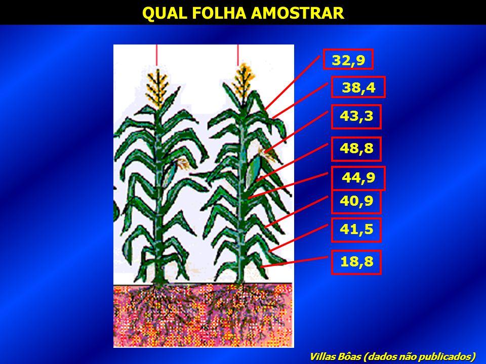 QUAL FOLHA AMOSTRAR 32,9 38,4 43,3 48,8 44,9 40,9 41,5 18,8 Villas Bôas (dados não publicados)