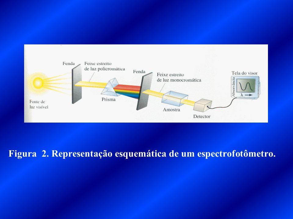 Figura 2. Representação esquemática de um espectrofotômetro.