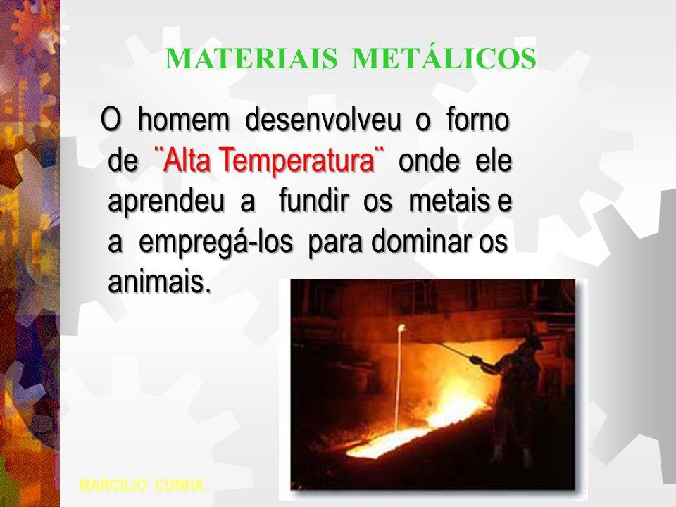 O homem desenvolveu o forno de ¨Alta Temperatura¨ onde ele