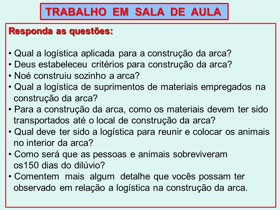 Qual a logística aplicada para a construção da arca