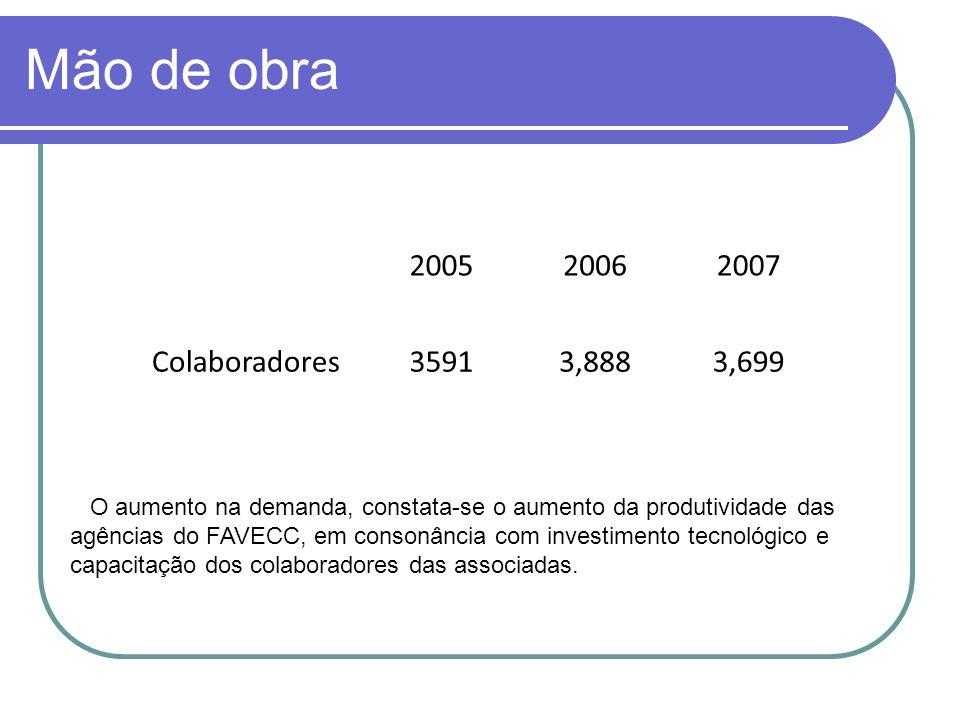 Mão de obra 2005 2006 2007 Colaboradores 3591 3,888 3,699
