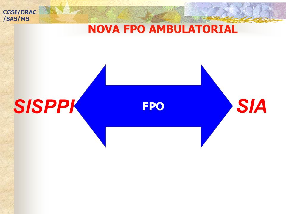 CGSI/DRAC/SAS/MS NOVA FPO AMBULATORIAL FPO SISPPI SIA
