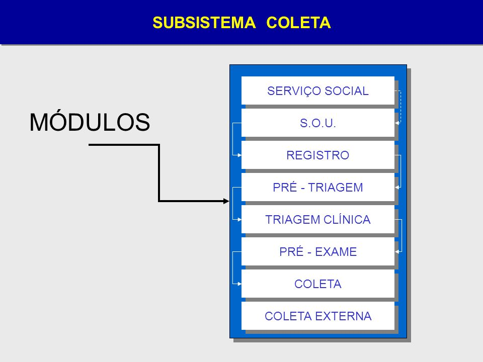 MÓDULOS SUBSISTEMA COLETA SERVIÇO SOCIAL S.O.U. REGISTRO PRÉ - TRIAGEM