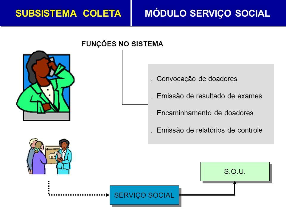 SUBSISTEMA COLETA MÓDULO SERVIÇO SOCIAL