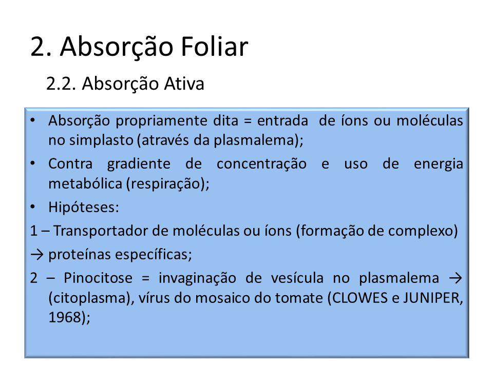 2. Absorção Foliar 2.2. Absorção Ativa