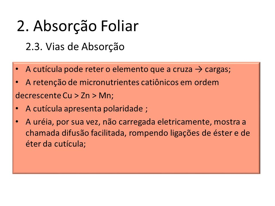 2. Absorção Foliar 2.3. Vias de Absorção