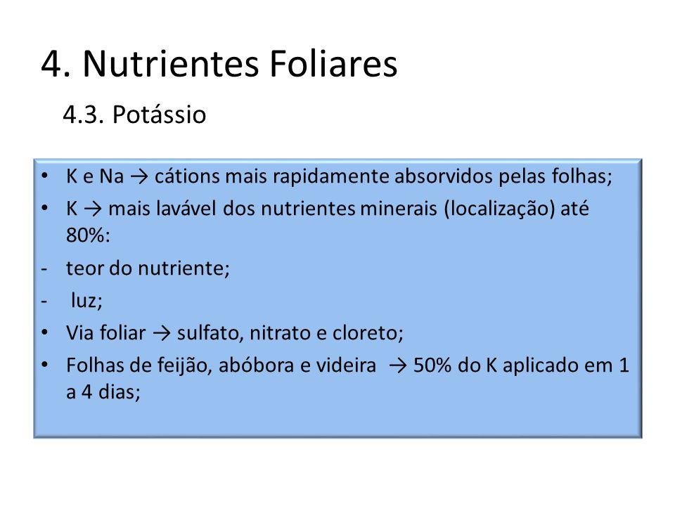4. Nutrientes Foliares 4.3. Potássio
