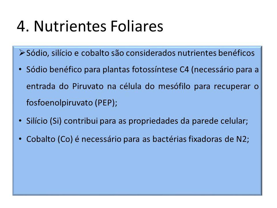 4. Nutrientes Foliares Sódio, silício e cobalto são considerados nutrientes benéficos.