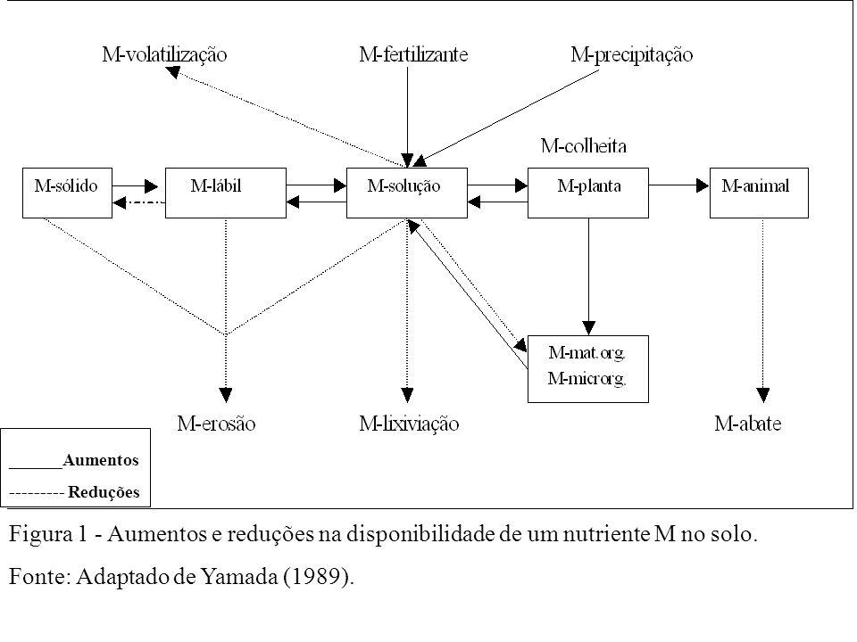 Fonte: Adaptado de Yamada (1989).